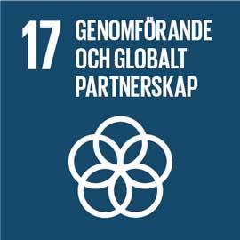 """En blå ruta med mål 17s text på """"Genomförande och globalt partnerskap""""."""