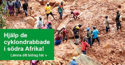 Hjälp de som drabbats av cyklonen i södra Afrika!
