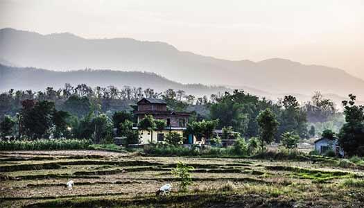 Morgondisigt jordbrukslandskap i de nepalesiska fotbergen i söder.